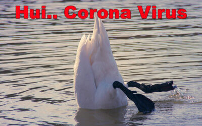 Corona Virus und die Welt steht still